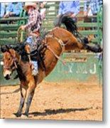 Saddlebronc 101 Metal Print