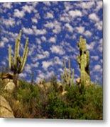 Saguaros Under A Cloud Dappled Sky Metal Print