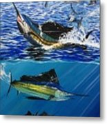 Sailfish In Costa Rica Metal Print