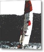 Sailing In Acapulca Metal Print