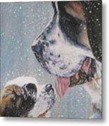 Saint Bernard Dad And Pup Metal Print