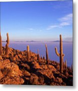 Salar De Uyuni And Cacti At Sunrise Metal Print
