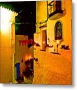 Salares By Night With Cat Metal Print