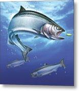 Salmon Painting Metal Print