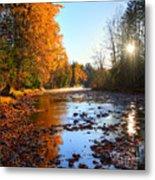 Salmon River Sanctuary Metal Print