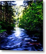 Salt Creek Falls Metal Print