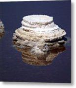 salt cristal at the Dead Sea Israel  Metal Print