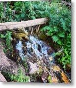 Mill Creek Canyon - Utah Metal Print