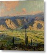 Salt River Irrigation Project - Arizona Metal Print