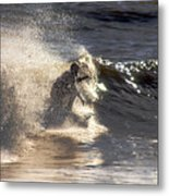 Salt Spray Surfing Metal Print