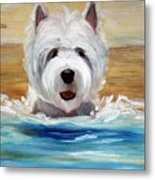 Salty Dawg Metal Print