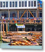San Francisco Pier 39 Sea Lions . 7d14272 Metal Print by Wingsdomain Art and Photography
