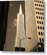 San Francisco - Transamerica Pyramid Sepia Metal Print