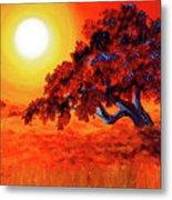 San Mateo Oak In Bright Sunset Metal Print