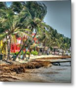 San Pedro Windy Day Metal Print