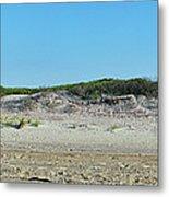Sand Dune Panorama  Metal Print