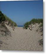 Sand Dunes Iv Metal Print
