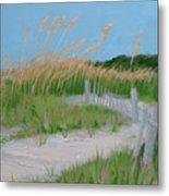 Sand Dunes No. 3 Metal Print