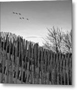 Dune Fences - Grayscale Metal Print