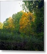 Sand Gap Hillside Metal Print