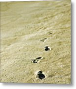 Sand In Motion Metal Print