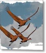 Sandhill Cranes 3 Metal Print