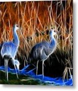 Sandhill Cranes Pair Fractal Metal Print