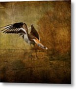 Sandpiper Piping Metal Print