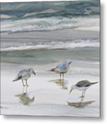 Sandpipers Metal Print by Julianne Felton