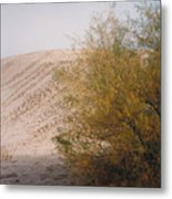 Sands Of Monahans Metal Print
