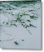 Sandscape Vines Metal Print
