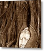 Sandstone Buddha Head Overgrown By Banyan Tree Thailand Metal Print