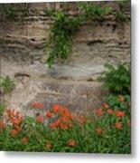 Sandstone Lilies Metal Print