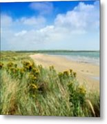 Sandunes At Fethard, Co Wexford, Ireland Metal Print