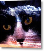 Sandy Paws Metal Print