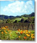 Sanford Ranch Vineyards Metal Print by Kurt Van Wagner