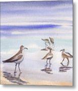 Sanibel Beach And Birds Metal Print