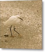 Sanibel's Yellow Slippers Metal Print
