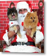 Santa Paws With Two Dogs Metal Print