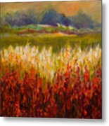 Santa Rosa Valley Metal Print by Shannon Grissom
