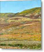 Santa Ynez Mountains Wildflowers Metal Print