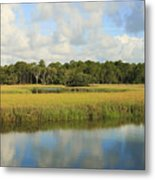 Sapelo Marsh Metal Print