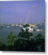 Sarasota Bay Harbor Metal Print