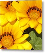 Satin Yellow Florals Metal Print