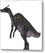 Saurolophus Dinosaur On White Metal Print