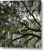 Savannah Green Leaves Metal Print