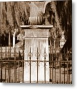 Savannah Sepia - Broken Metal Print