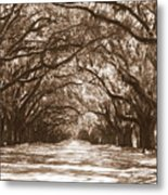 Savannah Sepia - Glorious Oaks Metal Print