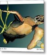Save The Turtle Metal Print