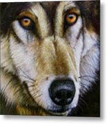 Save The Wolf Metal Print